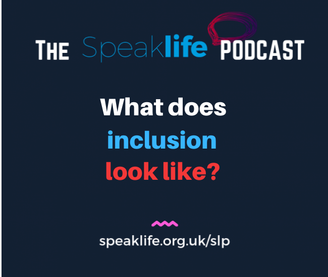 What does inclusion look like?- SLP275