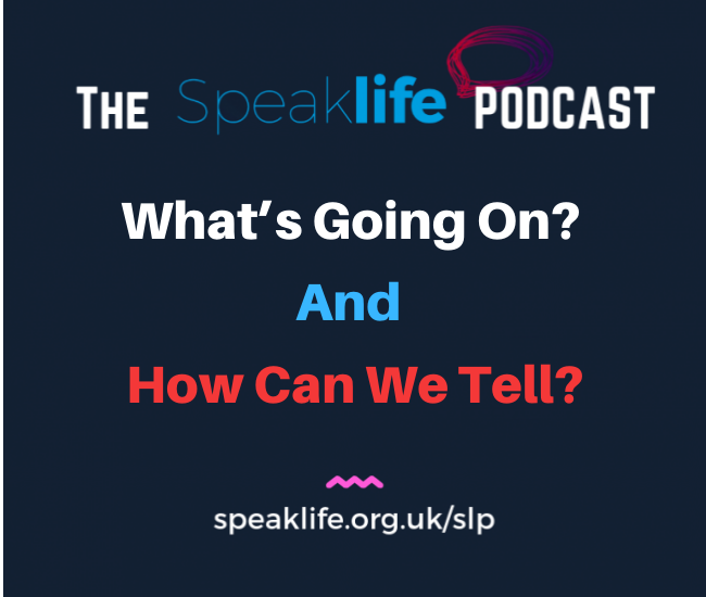 What's Going On? And How Can We Tell? – SLP273